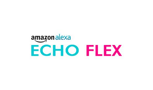 Alexa Echo Flex